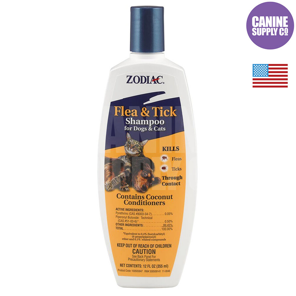 Can You Use Human Shampoo on Dogs? | petMD