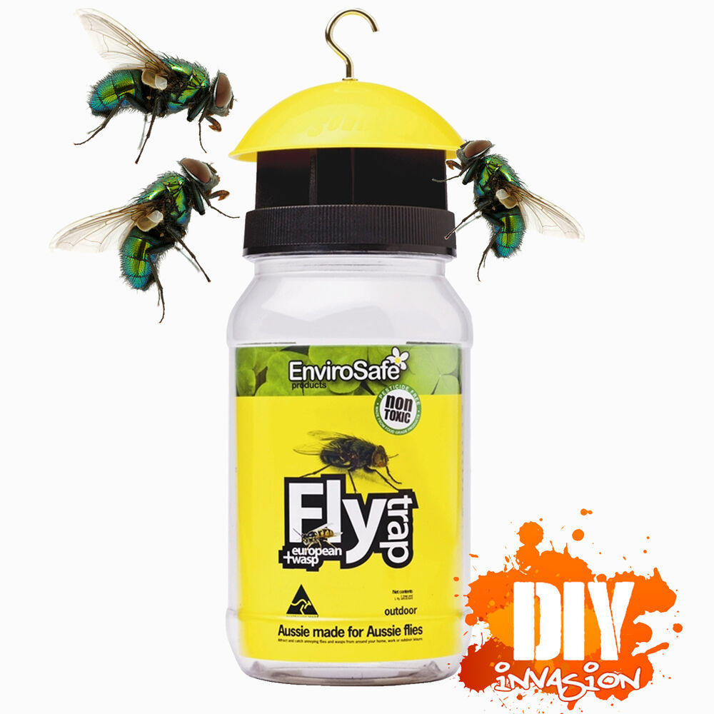 how to make a wasp trap australia