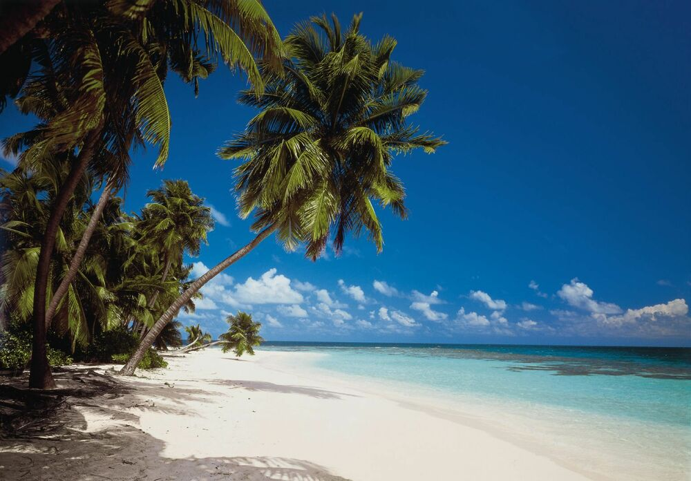 Wall mural maledives photo wallpaper large size wall art for Beach view wall mural