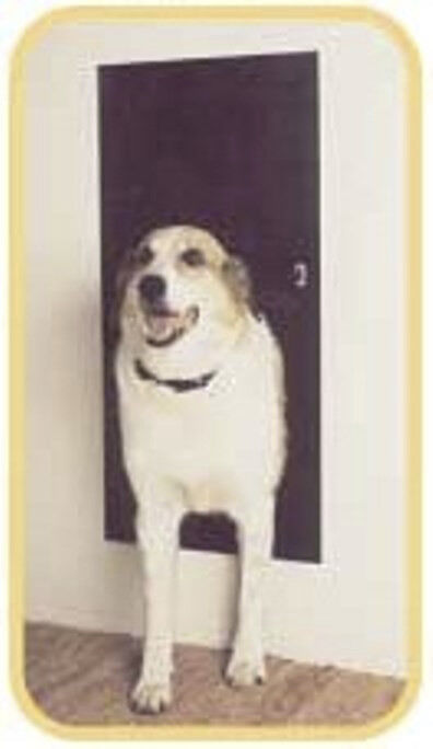 Solo Pet Door Automatic Electronic Dog And Cat Door Ebay