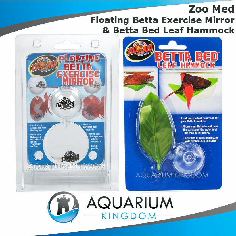 Fighting fish combo zoo med floating betta exercise for Betta fish mirror