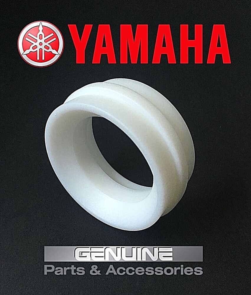 Yamaha Blaster Swing Arm Bearings