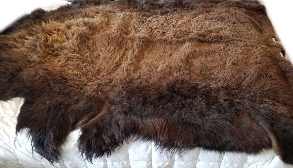 Buffalo Hide Rug Large Premium Winter Coat Tanned Bison