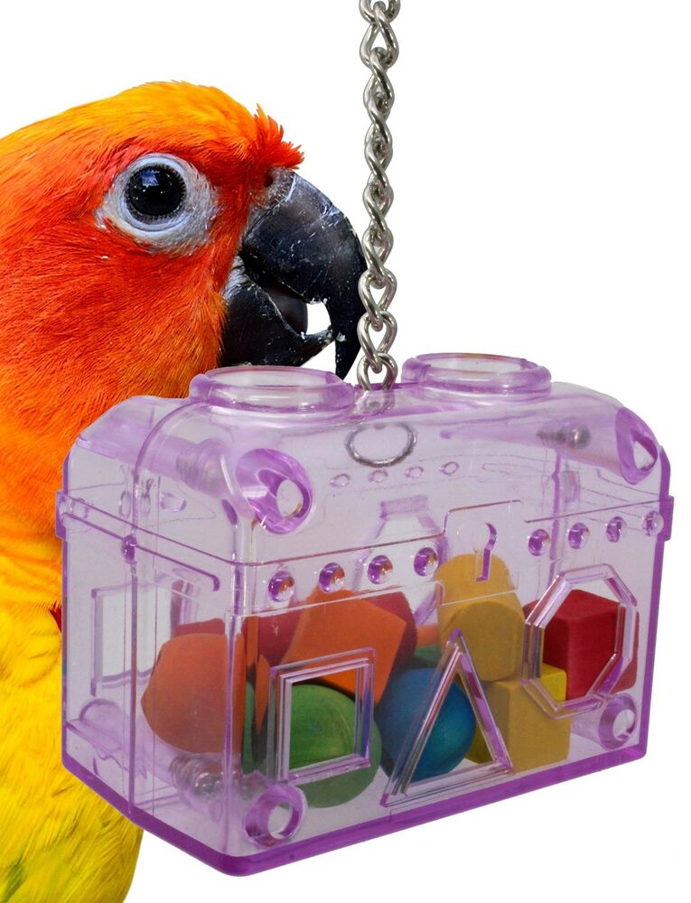 Small Toy Parrots : Small treasure chest birds toys foraging cages
