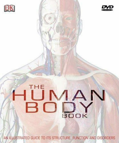 The Human Body By Steve Parker And Dorling Kindersley