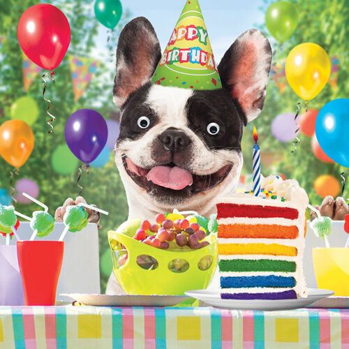 Happy Birthday in French  Learn French Help