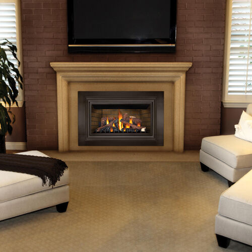 Napoleon Direvct Vent Gas Fireplace Insert Gdizc Lp Or Ng