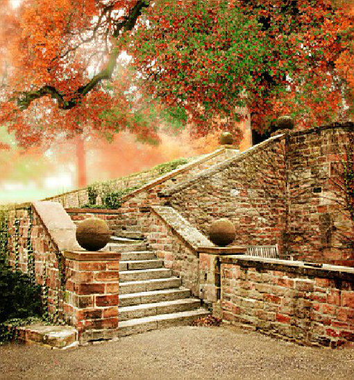 Fall Tree Stair Background Wedding Photography Backdrop