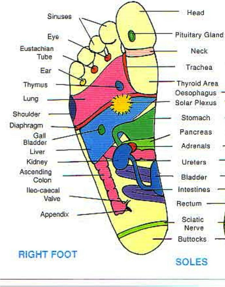 Learn Feet Reflexology Course Treatment Massage Points. Instant Auto Insurance Online. Software Development Degree Botox New Jersey. Black Mold Sickness Treatment. Ny Times Learning Network Best Dentist Denver. Schools With Criminal Justice. Franklin Heating And Cooling. White Surveillance Cameras River Boat Cruises. Depression Signs Symptoms School Toilet Paper