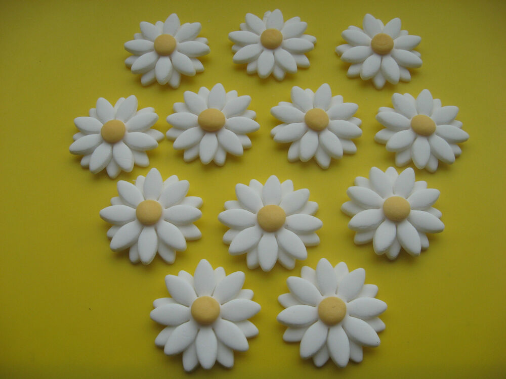 12 EDIBLE DOUBLE DAISY FLOWER CUPCAKE / CAKE DECORATION ...