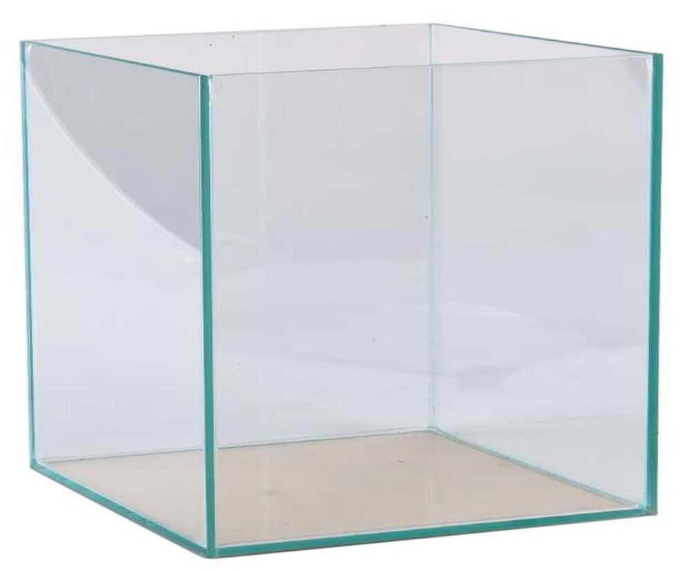 aquarium 30x30x30cm w rfel quadrat becken glasbecken transparent verklebt ebay. Black Bedroom Furniture Sets. Home Design Ideas