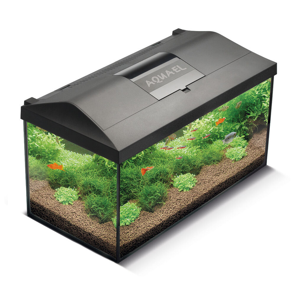 aquael leddy 40 aquarium komplett set mit led beleuchtung 25l nano aquarienset ebay. Black Bedroom Furniture Sets. Home Design Ideas