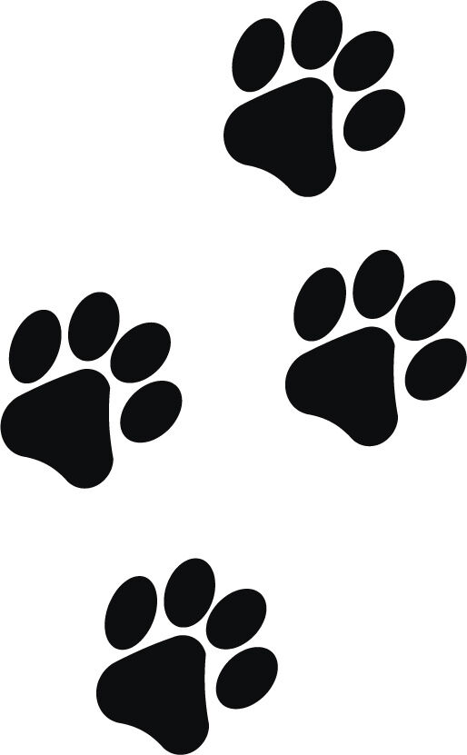 Intrepid image within printable paw prints