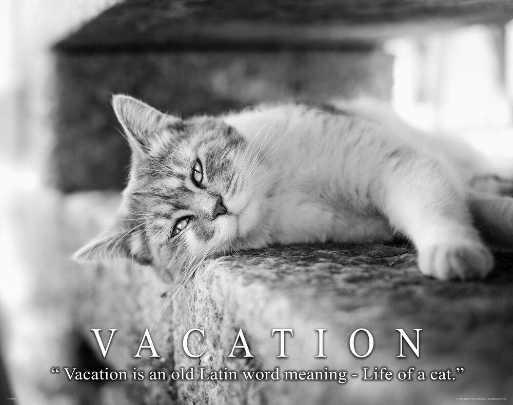 Vacation Home Motivational Poster Art Print Travel Agency ...