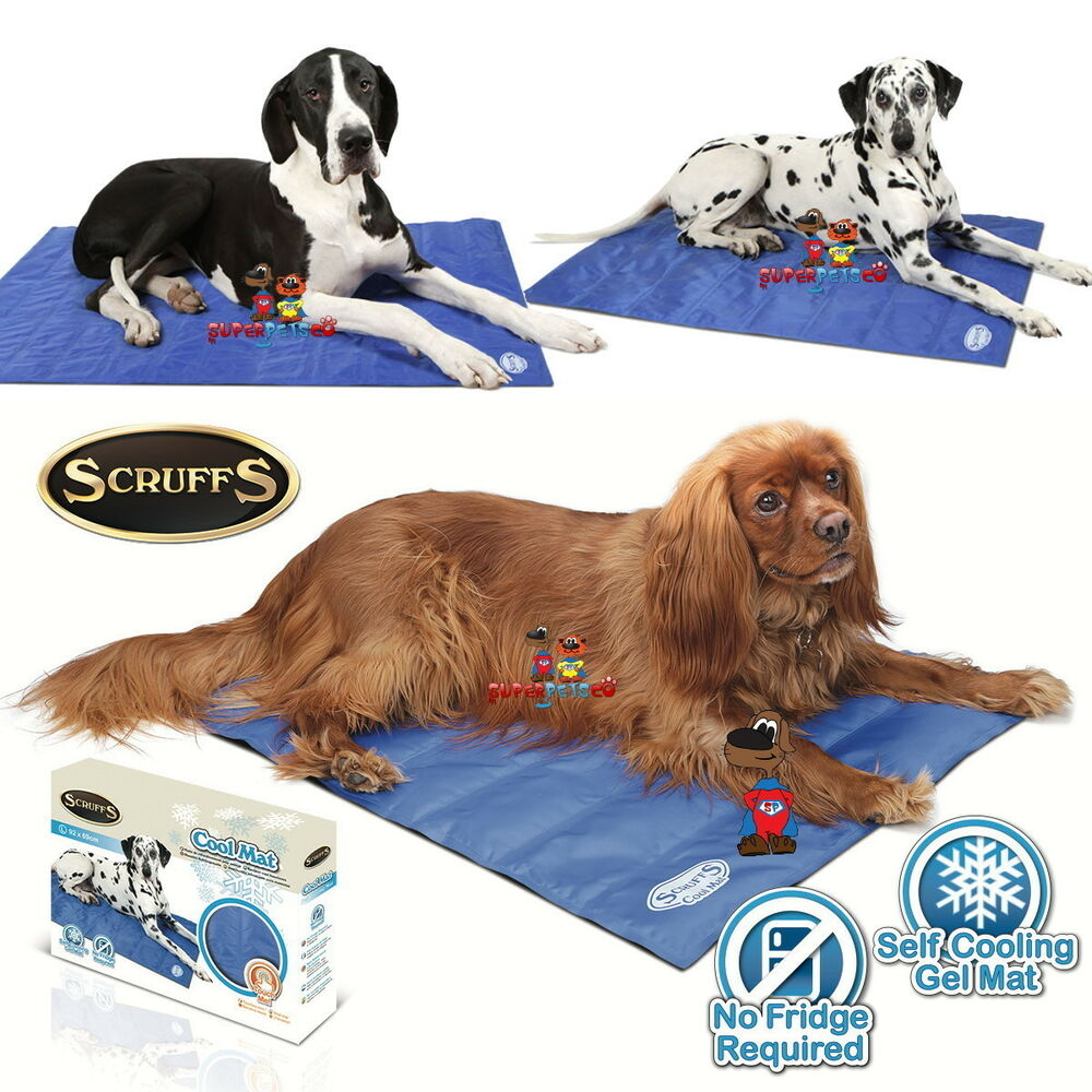 scruffs cool mat self cooling gel mat pet dog 4 sizes. Black Bedroom Furniture Sets. Home Design Ideas