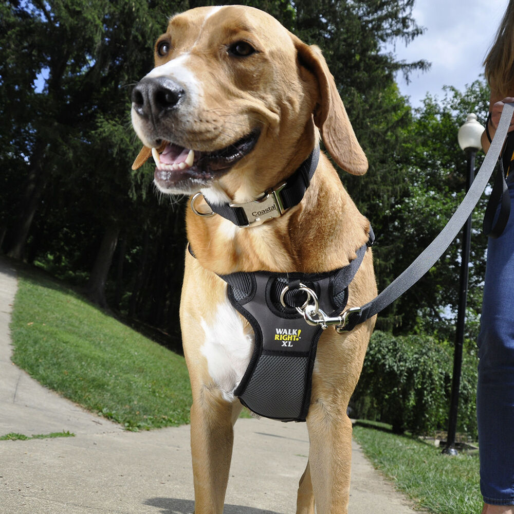 Paw Control Dog Harness