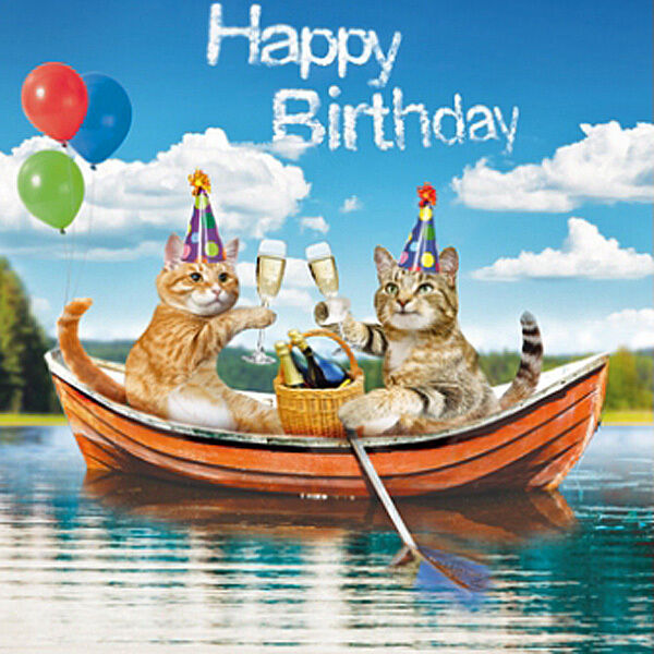 Birthday Party Yacht: Party Cats Birthday Card The Fizzy Boat, Funny Ginger