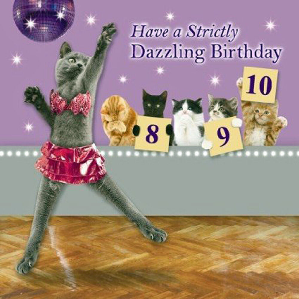 cat birthday card dancing queen strictly dazzling