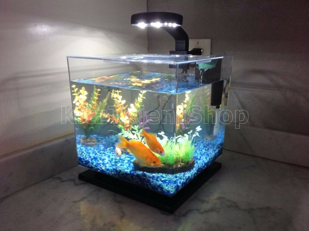 3 gallon fish tank aquarium cube led light freshwater for Fish tank aquarium
