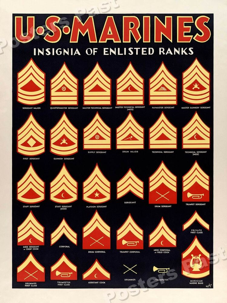 Us Marines Insignia Of Enlisted Ranks 1940 S World War 2