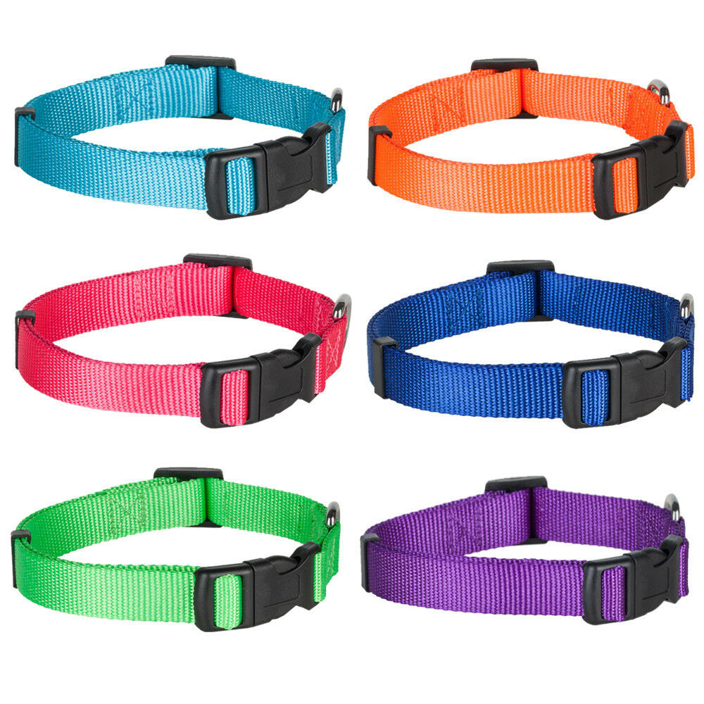 Back Country Dog Collars