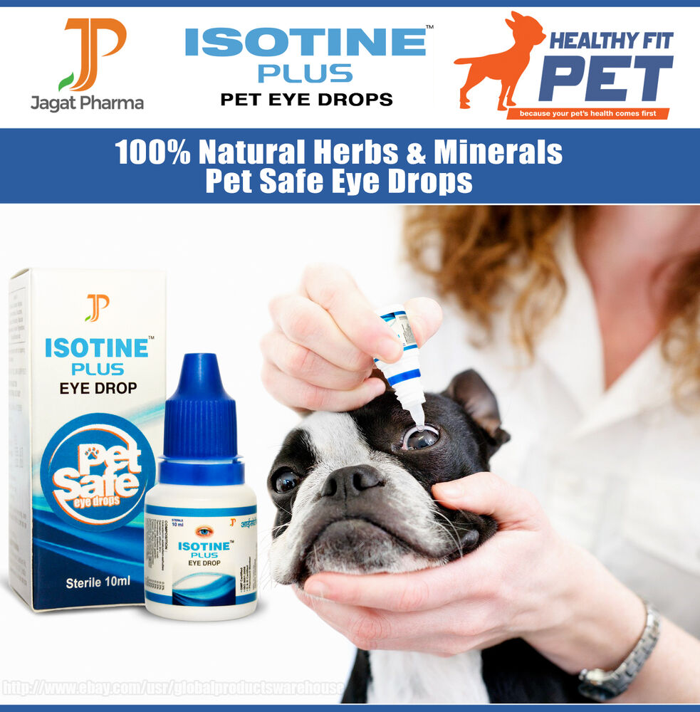 Cataract Eye Drops For Dogs Uk