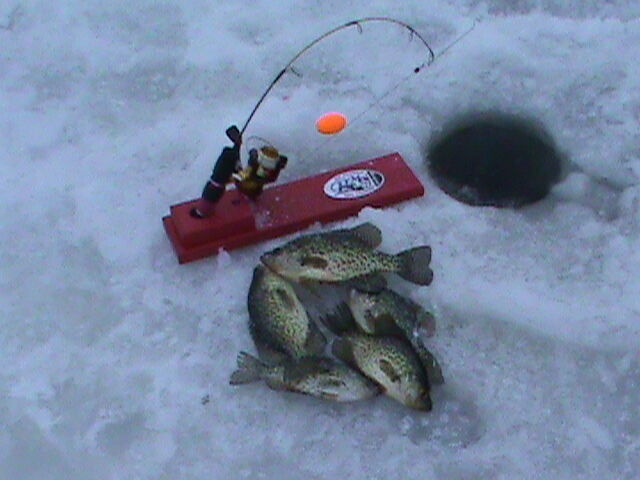 Ice fishing tip ups ebay for Ht ice fishing