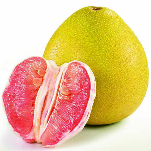 how to grow pomelo from seeds