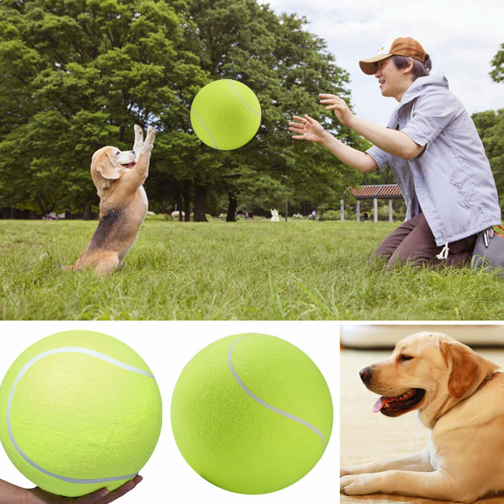 Big Dog Ball Launcher