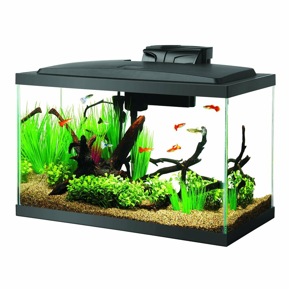 Aqueon fish aquarium starter kit led 10 gallon ebay for Aqueon fish tank