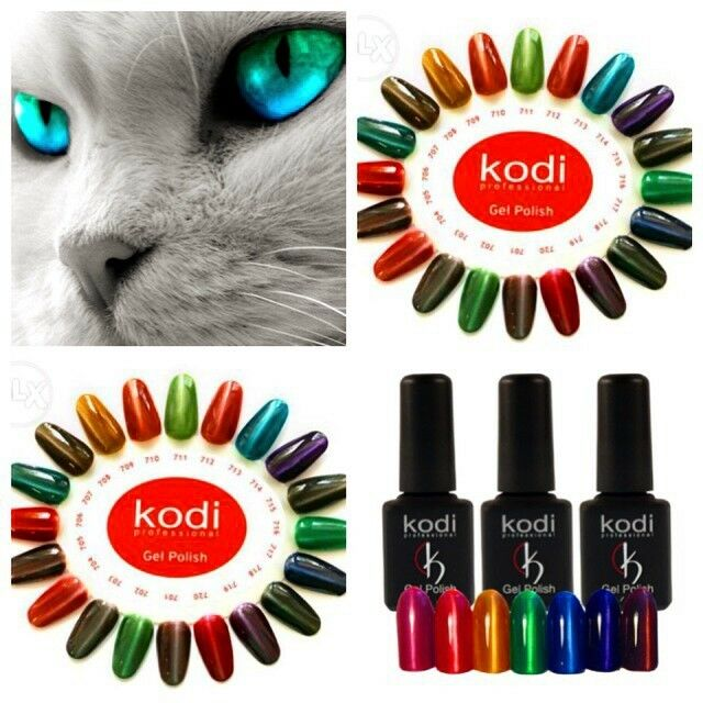 Kodi Professional - Cat\'s eye effect Nail Polish Moon light 8ml ...