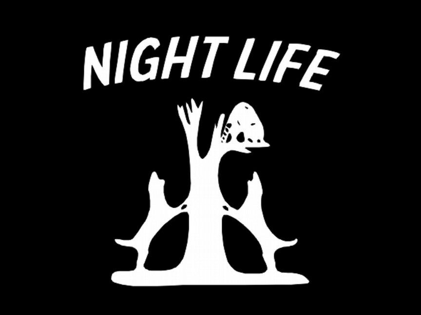 night life coon hunting dogs treeing wall decal window