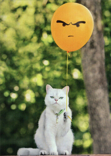 Detalles Acerca De Cat With Angry Balloon Funny Birthday Card