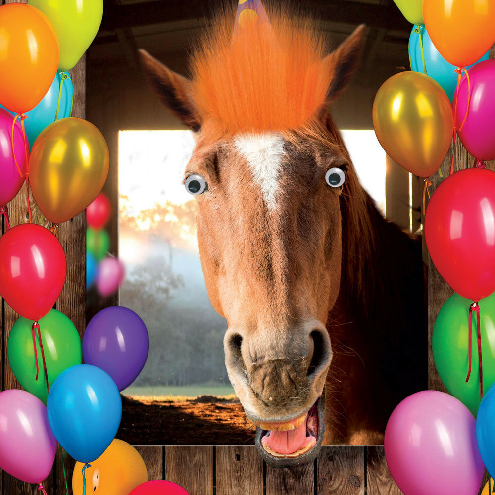 Horse Birthday Card Laughing Horse 3D Goggly Eyes & Fluff