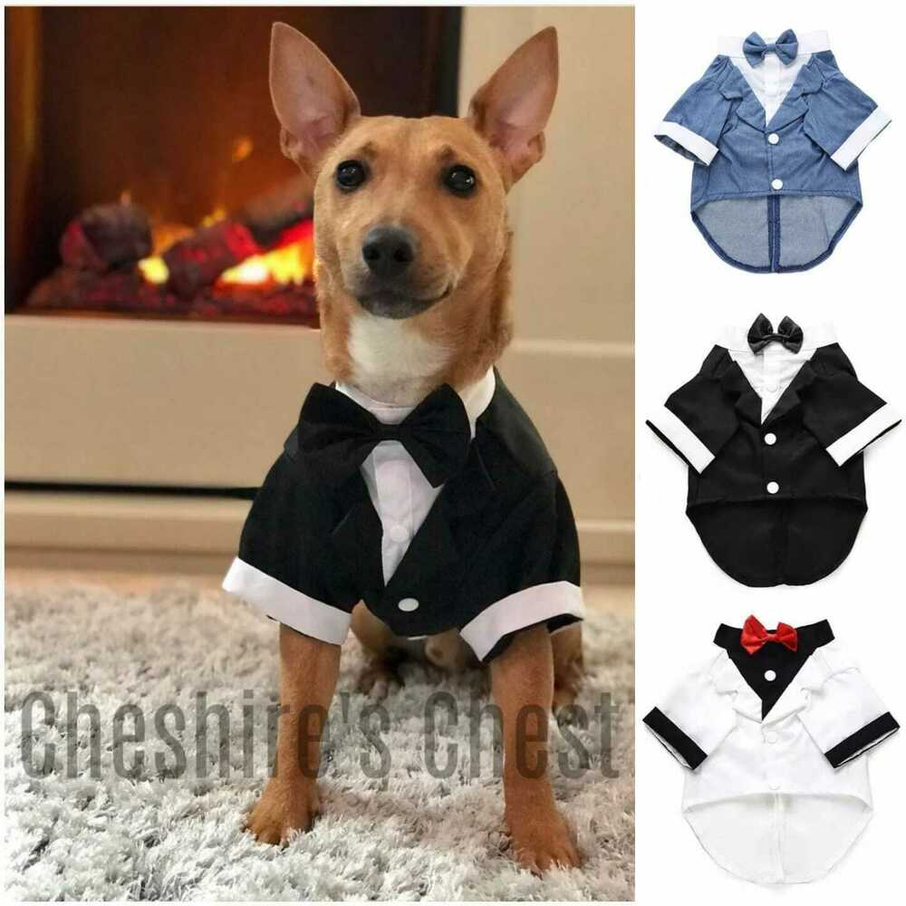 Dog Wedding Clothes | eBay
