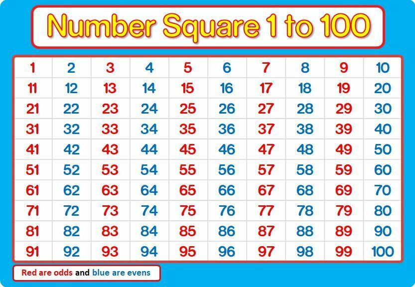 A4 NUMBER SQUARE 1-100 Laminated BLUE And PINK Maths Chart