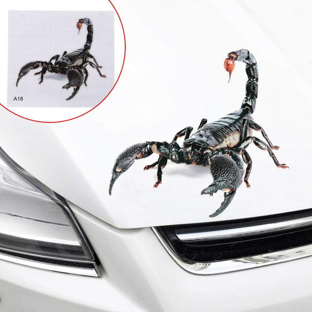 Details about car truck 3d scorpion realistic tailgate hood window decal vehicle vinyl