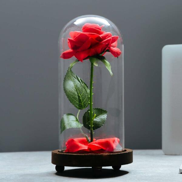 Valentines Day Gift For Girlfriend Him Her Wife Husband Mom Eternal Real Rose