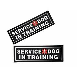 SERVICE DOG IN TRAINING 3D Rubber PVC Patch Label Tag For Harness Collar Vest