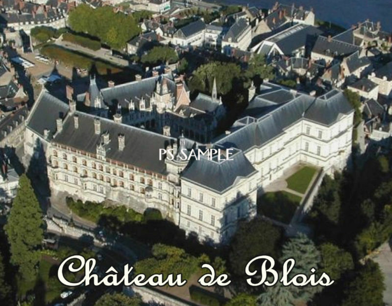 france chateau de blois travel souvenir flexible. Black Bedroom Furniture Sets. Home Design Ideas
