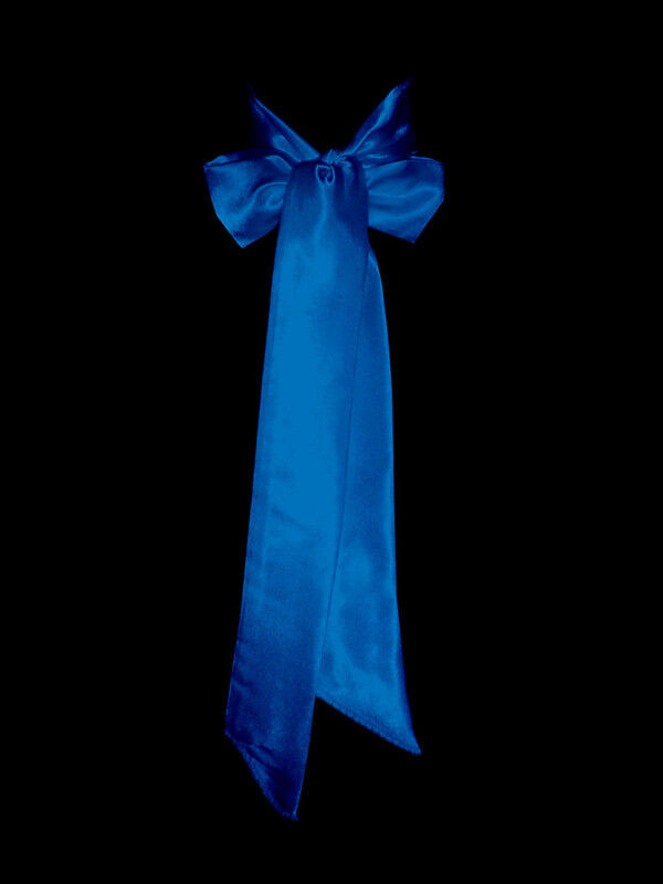 New royal blue satin wedding dress party sash tie belt tie for Blue sash for wedding dress