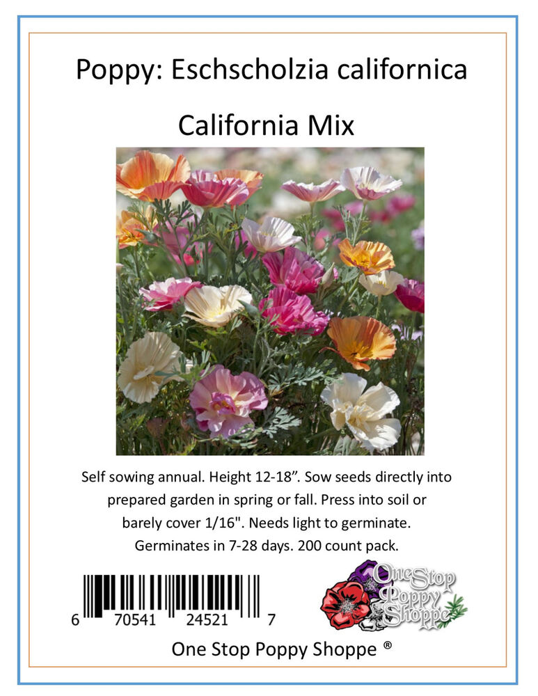 250 california poppy flower seeds mixed colors eschscholzia poppies 37 ebay. Black Bedroom Furniture Sets. Home Design Ideas