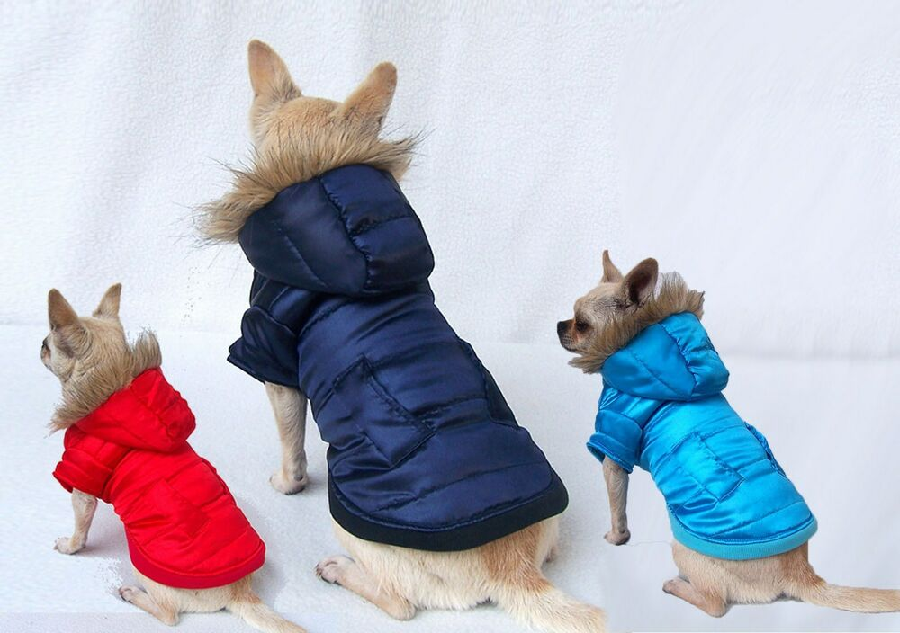 Dog Puffer Coat D Ring