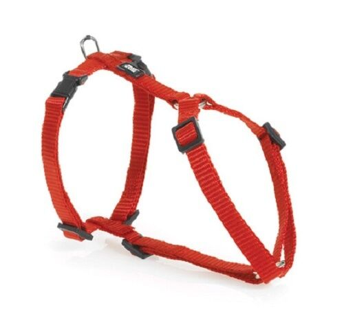 Walk R Cise Dog Harness
