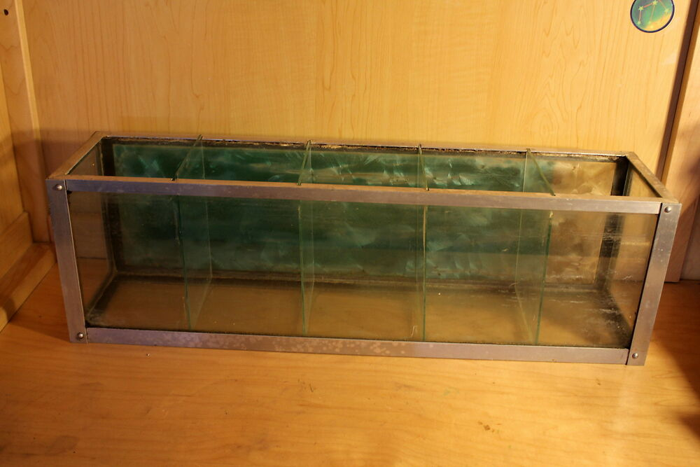 Vtg metaframe betta fish tank aquarium stainless divided for Fish tanks for sale ebay
