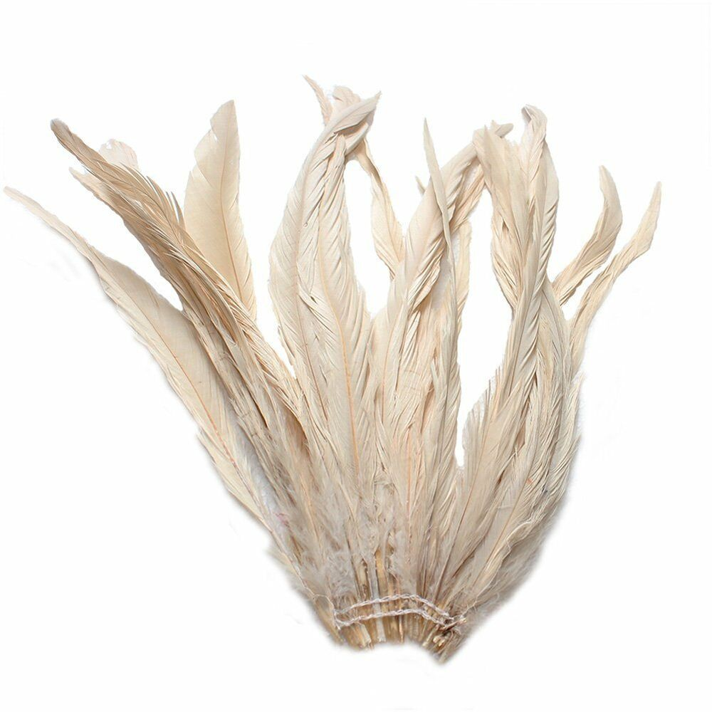 25pcs 10 12 long champagne dyed rooster coque tail for Where to buy craft feathers