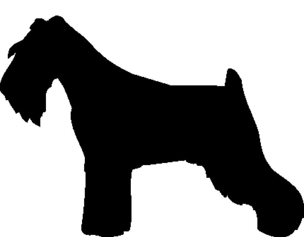 Black Dog Grooming Products