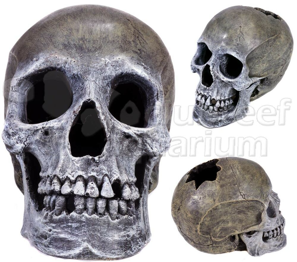 Skull Human-like Hollow Resin Fish Aquarium/Reptile Terrarium Cave ...