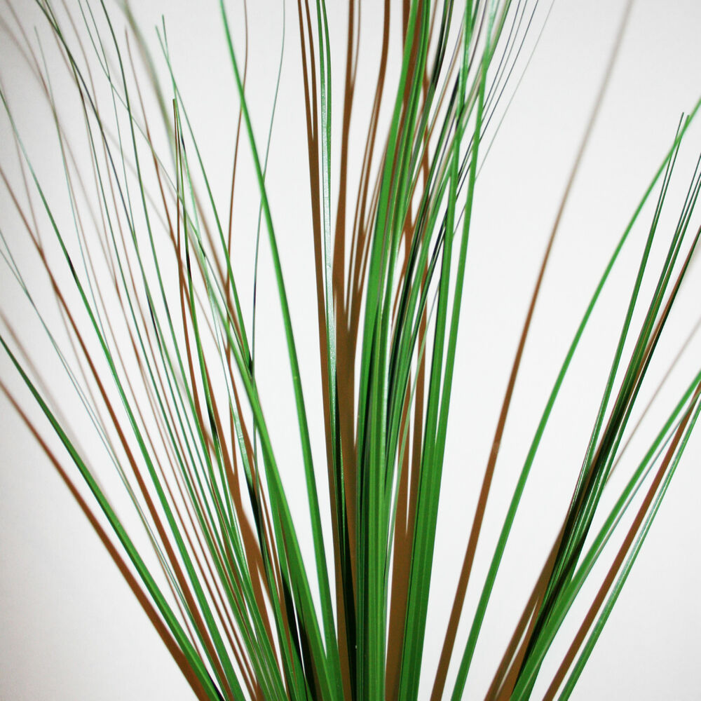 Pack Of 3 Artificial Onion Bear Grass Stems  Decorative. Room Size Area Rugs. Decorative Glass Bottle. Exterior House Decorations. Cute House Decor. Home Cabin Decor. Wall Sculpture Decor. Small Dining Room Set. Decorative Wall Plates For Hanging