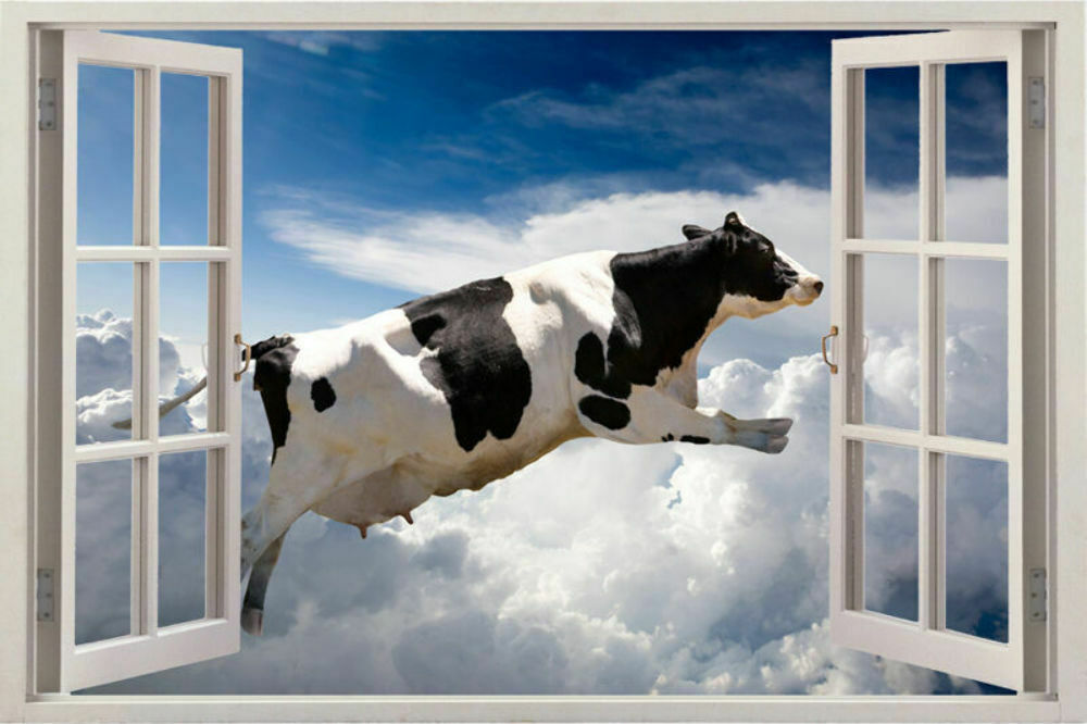 Huge window 3d view funny cow animal wall stickers art for Sticker mural 3d